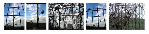 paysage-du-5-copier.jpg