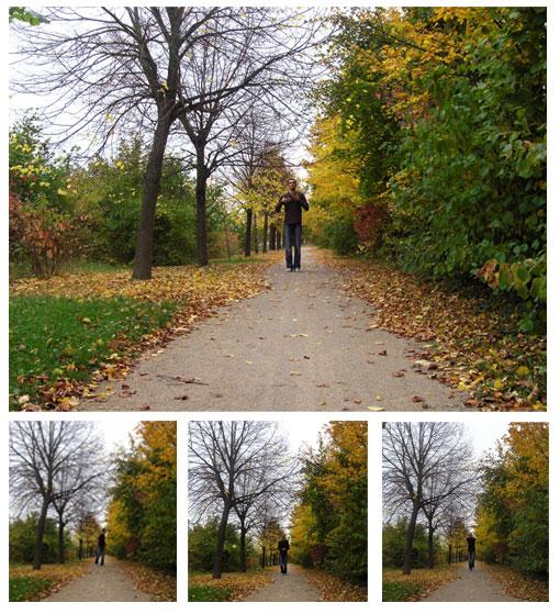 hassan-automne.jpg