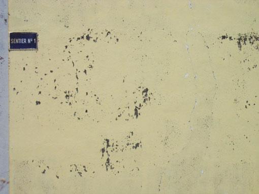 sentier-1.jpg