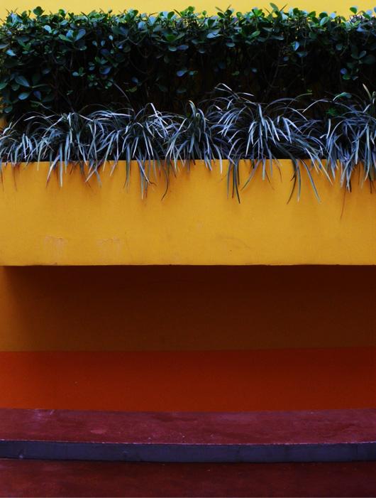 48-alana-jaune.jpg