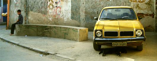 46-voiture-jaune-chien-qui-dort.jpg