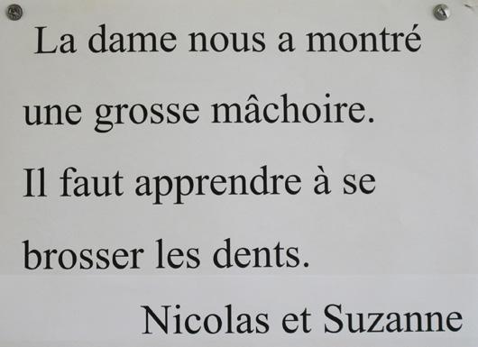 14-nicolas-suzanne-et-la-machoire.jpg