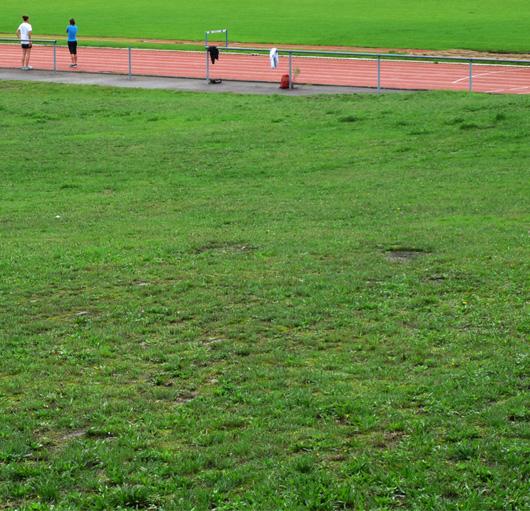 10-sport.jpg