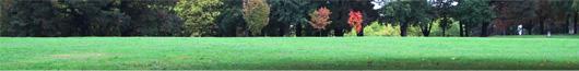 12-automne.jpg