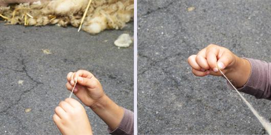 8-la-tonte-et-la-laine-et-les-enfants.jpg