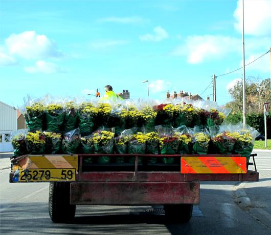 38-tracteur-de-fleur.jpg