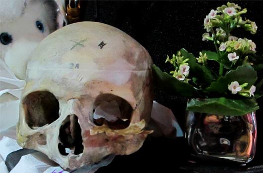 22-youki-vanite-fleur.jpg