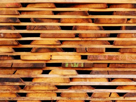planches.jpg