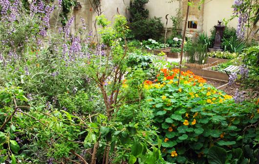 jardinet-des-enfants-rouges.jpg